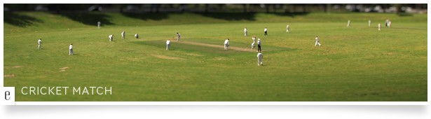 Cricket Match Timelapse